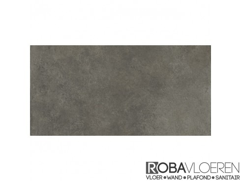 Timeless Anthracite 30x60 Rett